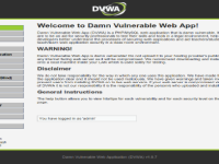 DVWA: Conociendo y explotando vulnerabilidades web (Level: low)